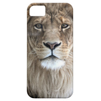 Lion King iPhone 5 case