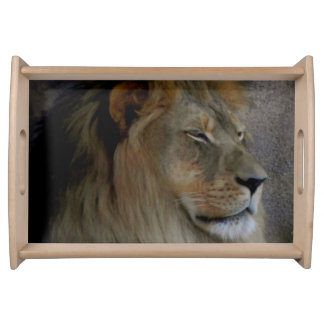 Lion - King of the Beast Serving Trays