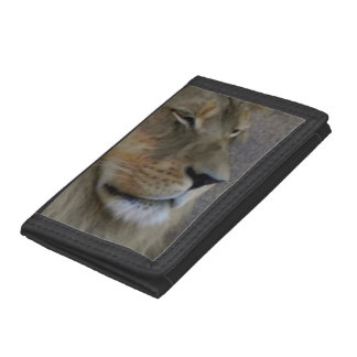 Lion - King of the Beast Trifold Wallets