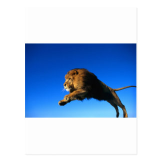 Lion Leaping and Blue Sky Postcard