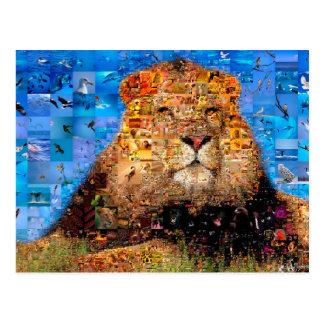 lion - lion collage - lion mosaic - lion wild postcard