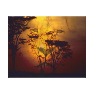 Lion Looking Over African Sunset Canvas Print