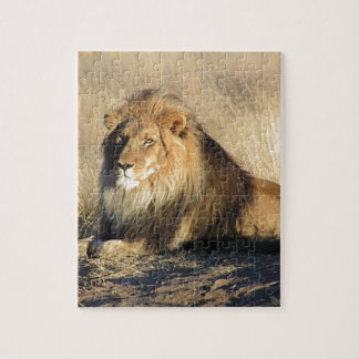 Lion lounging in Nambia Jigsaw Puzzle