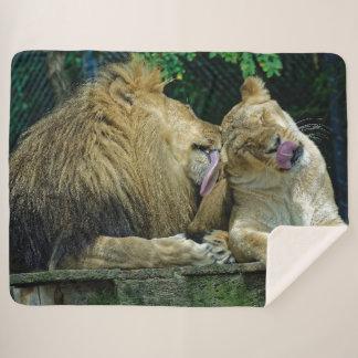 LION LOVE SHERPA BLANKET