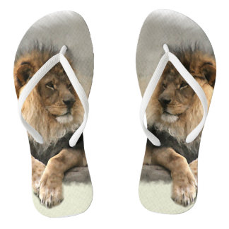 Lion Lover Thongs