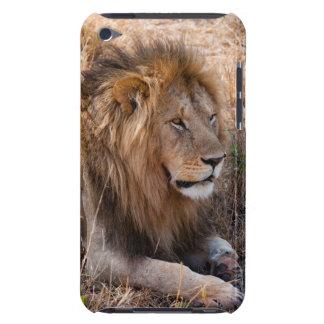 Lion Maasai Mara National Reserve, Kenya iPod Touch Case-Mate Case