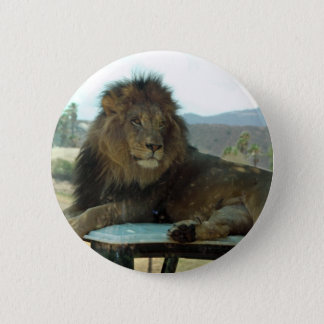 Lion on Car Button