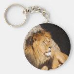Lion Photo Keychain