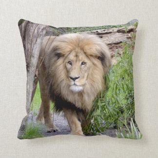 Lion Photo Print Throw Pillow