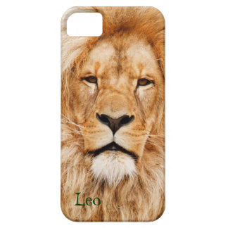 Lion Photograph iPhone 5 Phone Case