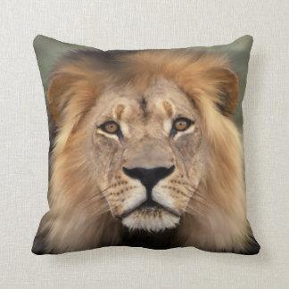 Lion Photograph Throw Pillow