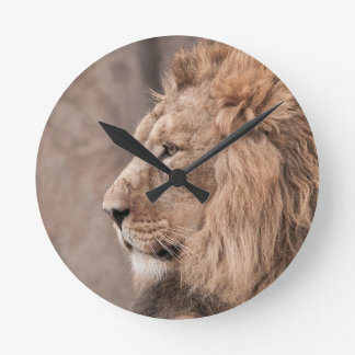 Lion Photography Wall Clock