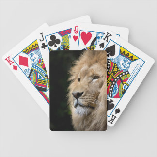lion poker deck