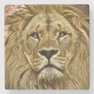 Lion portrait stone coaster