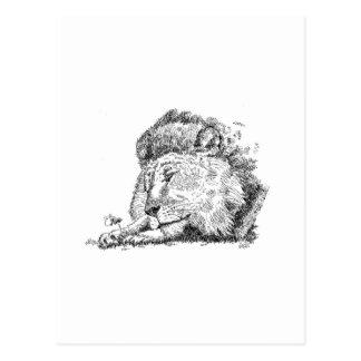 Lion Products.jpg Postcard