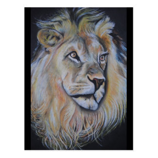 Lion Products - King of the Beasts! Postcard
