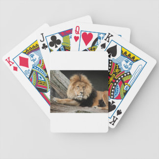 Lion Resting Bicycle Playing Cards