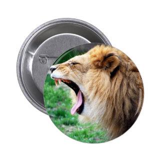 lion roars buttons