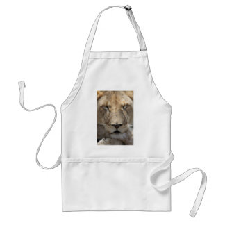 Lion Sleeping With Crossed Legs Aprons