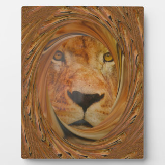 Lion smile display plaques
