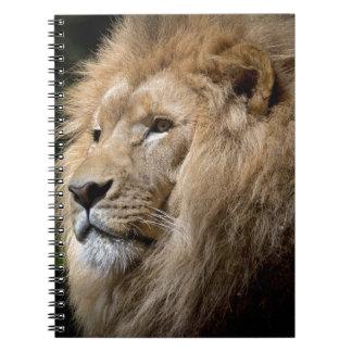 Lion Spiral Notebooks