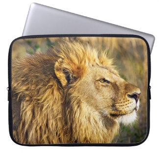 Lion Wild Animal Wildlife Safari Computer Sleeves