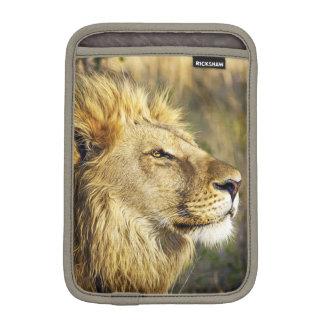 Lion Wild Animal Wildlife Safari iPad Mini Sleeves