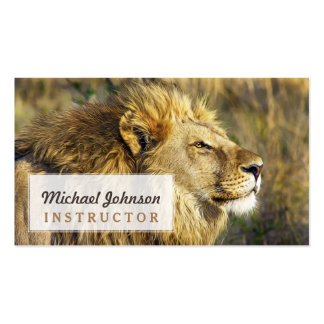 Lion Wild Animal Wildlife Safari Pack Of Standard Business Cards