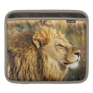 Lion Wild Animal Wildlife Safari Sleeves For iPads