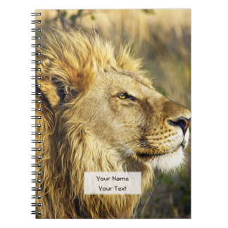Lion Wild Animal Wildlife Safari Spiral Note Book