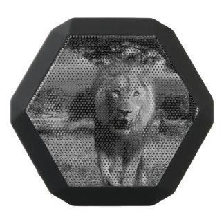 Lion Wildcat