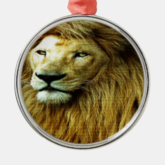 Lion With Rainbow Border Silver-Colored Round Decoration
