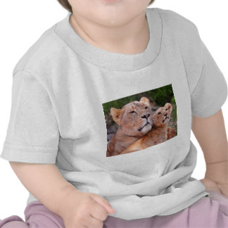 Lioness and Lion Cub Rest Before The Hunt T Shirts