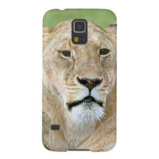 Lioness and Two Cubs, East Africa, Tanzania, Galaxy S5 Case