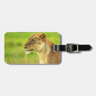 Lioness in Grass Bag Tag