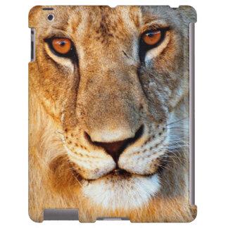 Lioness (Panthera Leo) Portrait. Tarangire