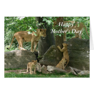 Lioness Pride Mother's Day Card
