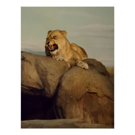Lioness showing off poster