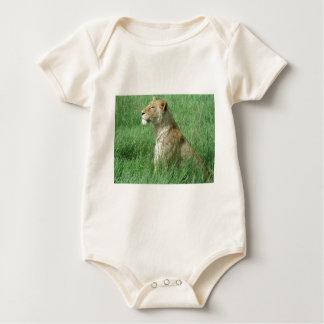 Lioness Baby Creeper