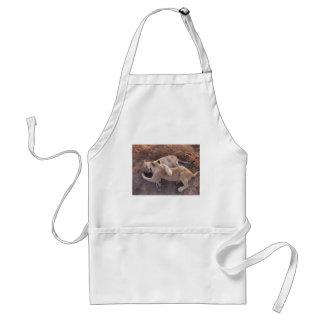 lions adult apron