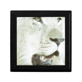 Lion's Face Close-up! Small Square Gift Box