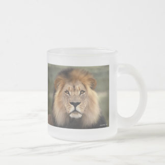 Lions Photograph Frosted Glass Coffee Mug