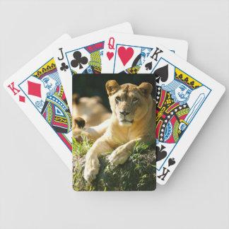 Lions Poker Deck