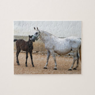 Lipizzan Mare and Foal Jigsaw Puzzle