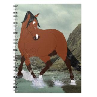 Lipizzaner Horse Stallion Notebooks