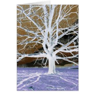 Lisa's Tree Card