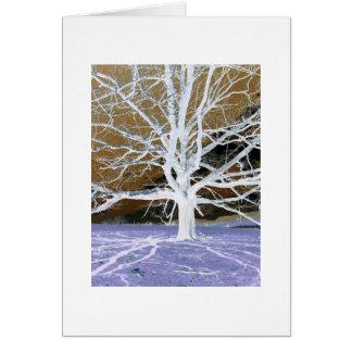 Lisa's Tree - with border Card