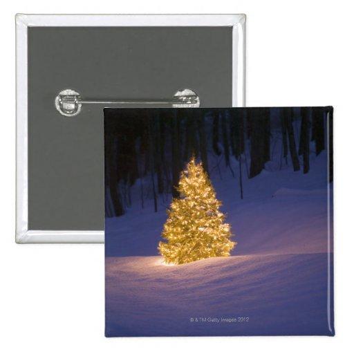 Lit Christmas tree outside Pin