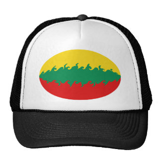 Lithuania Gnarly Flag Hat