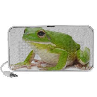 Litora Infrafrenata, Frog Portable Speakers